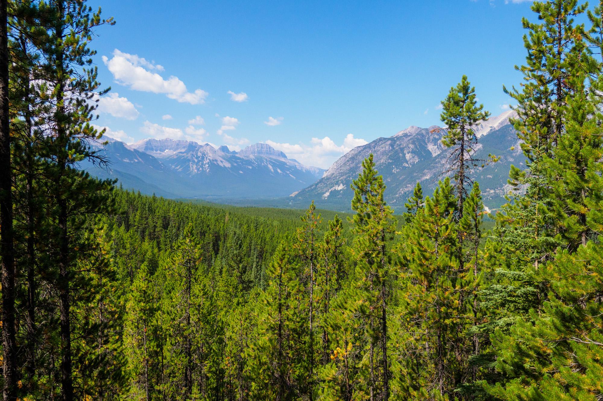Banff Nationalpark - Aussicht vom Sundance Canyon