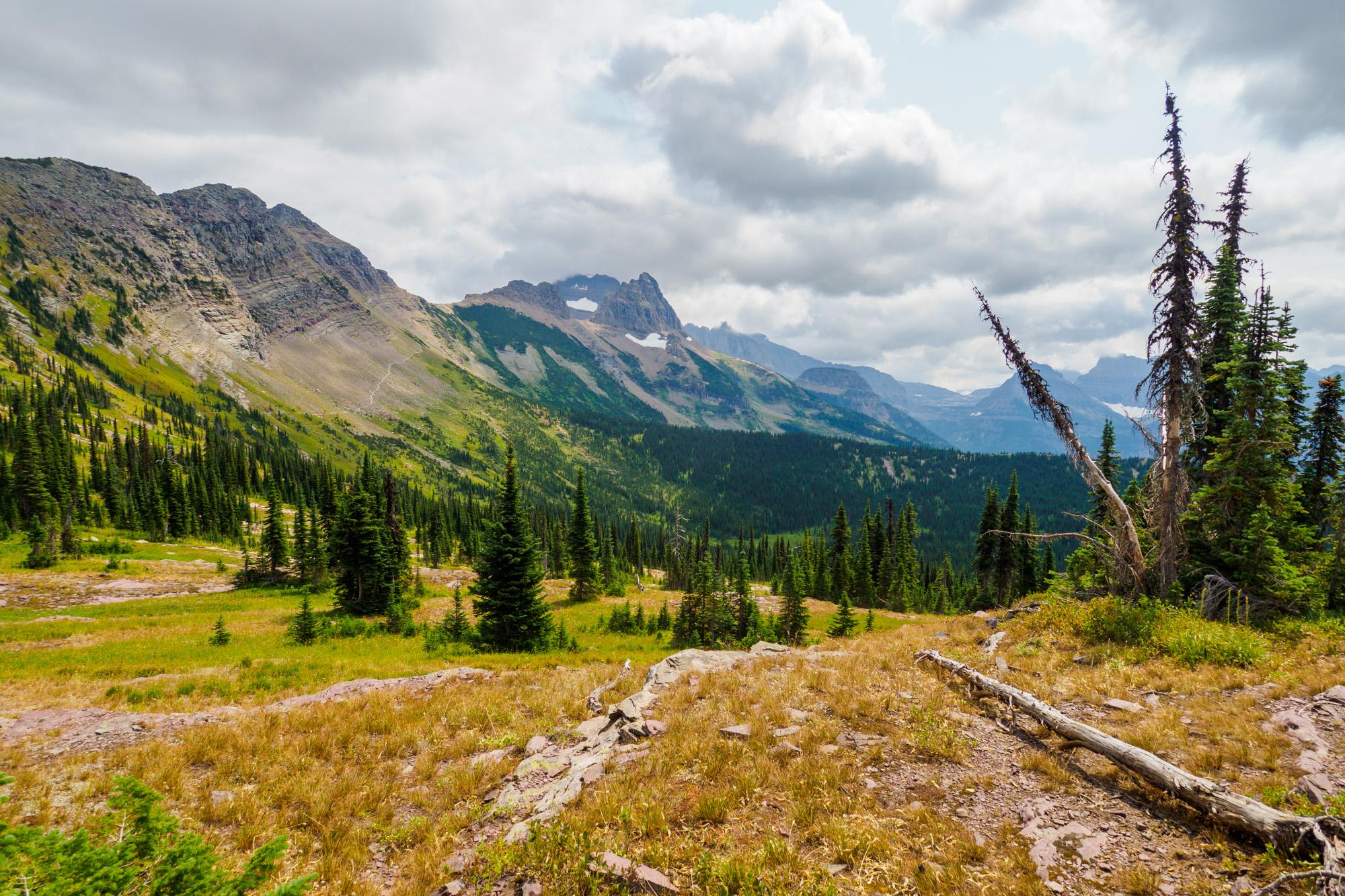 Glacier Nationalpark - Highline Trail