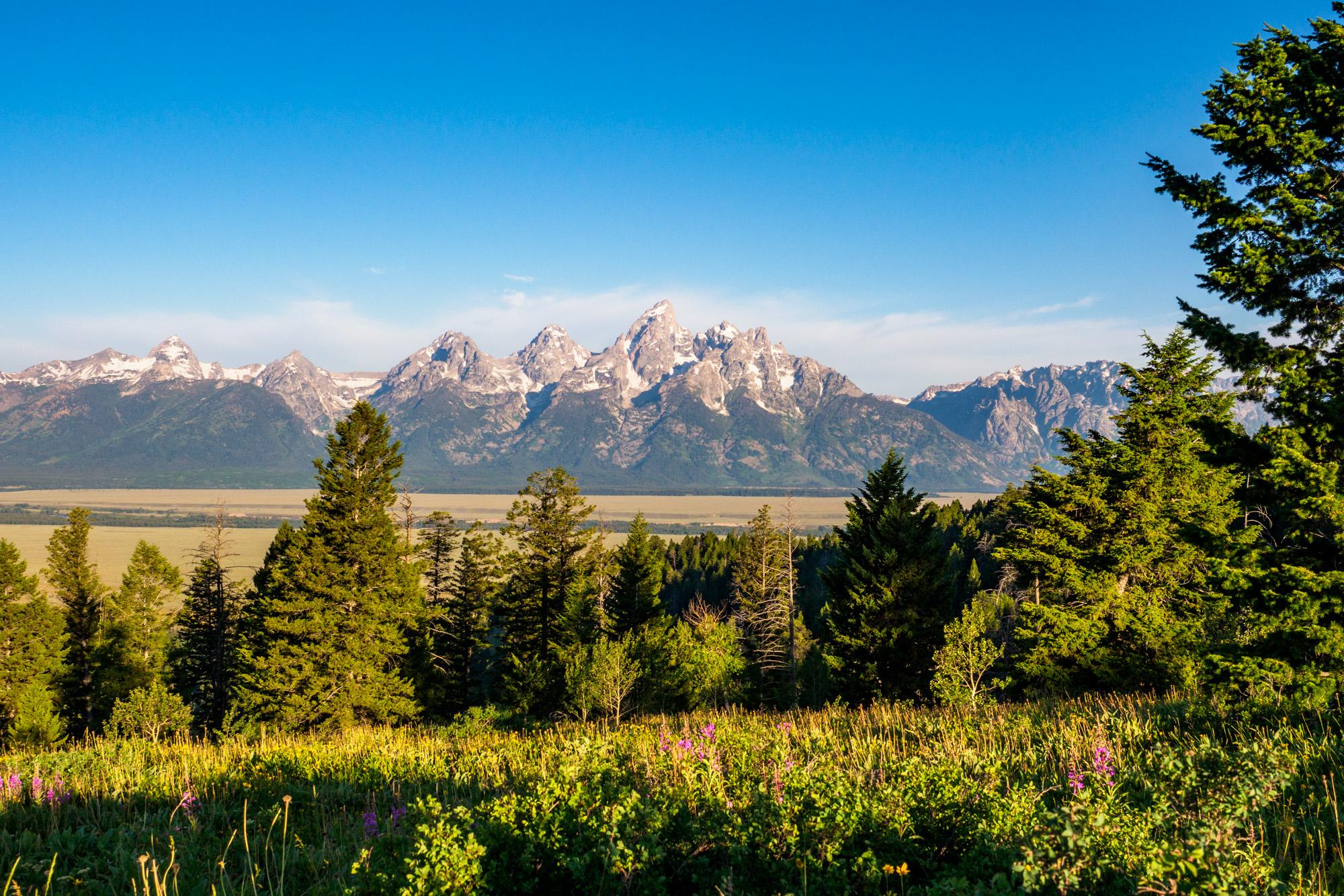 Grand Teton Nationalpark - Sicht vom Shadow Mountain auf den Grand Teton
