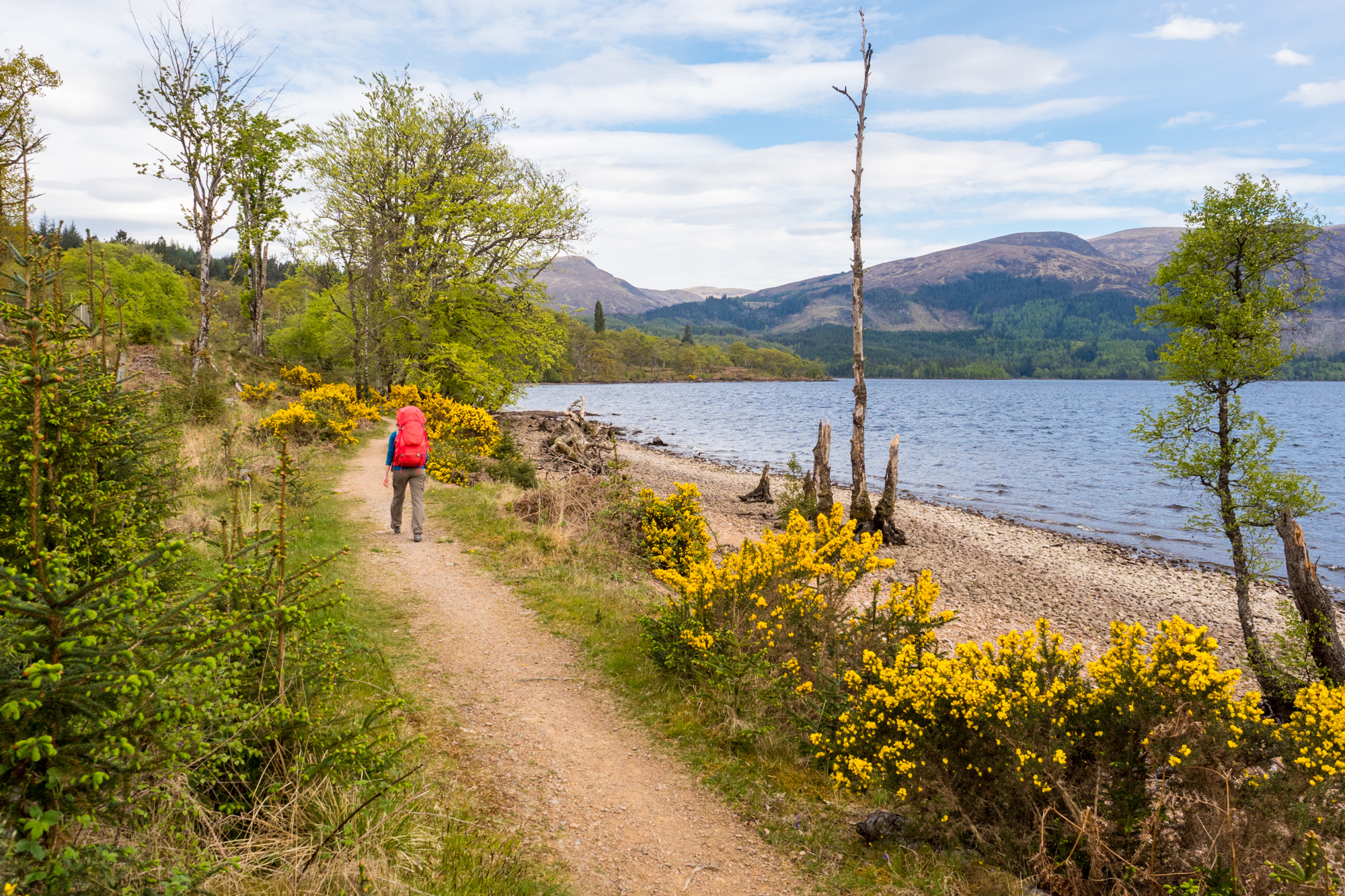 Great Glen Way - Am Loch Lochy