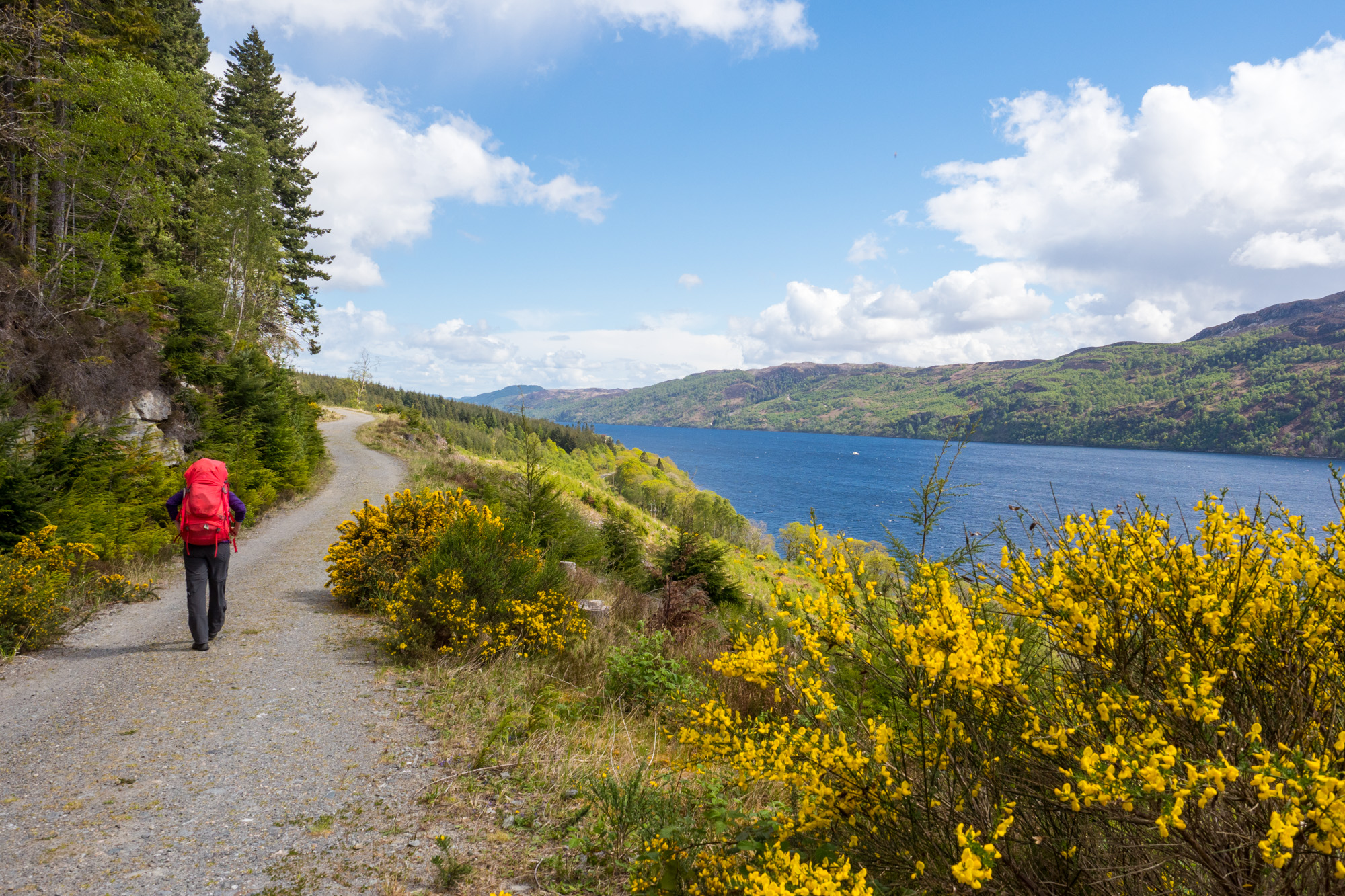 Great Glen Way - Am Loch Ness