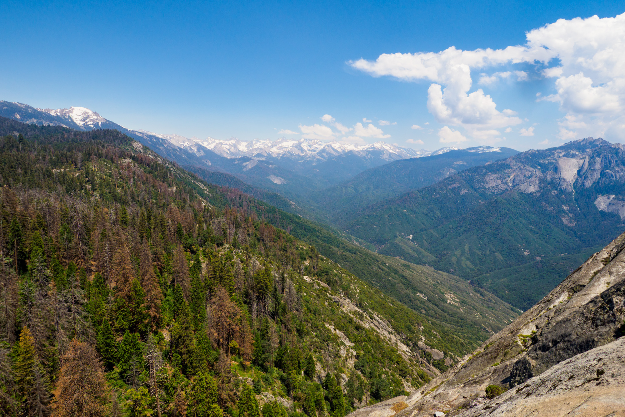 Sequoia Nationalpark - Aussicht vom Moro Rock