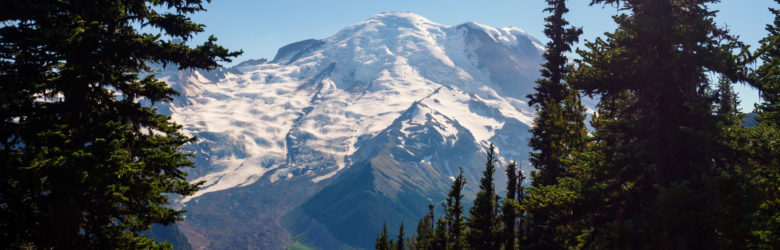 Mt Rainier Nationalpark - Aussicht von Emmons Vista