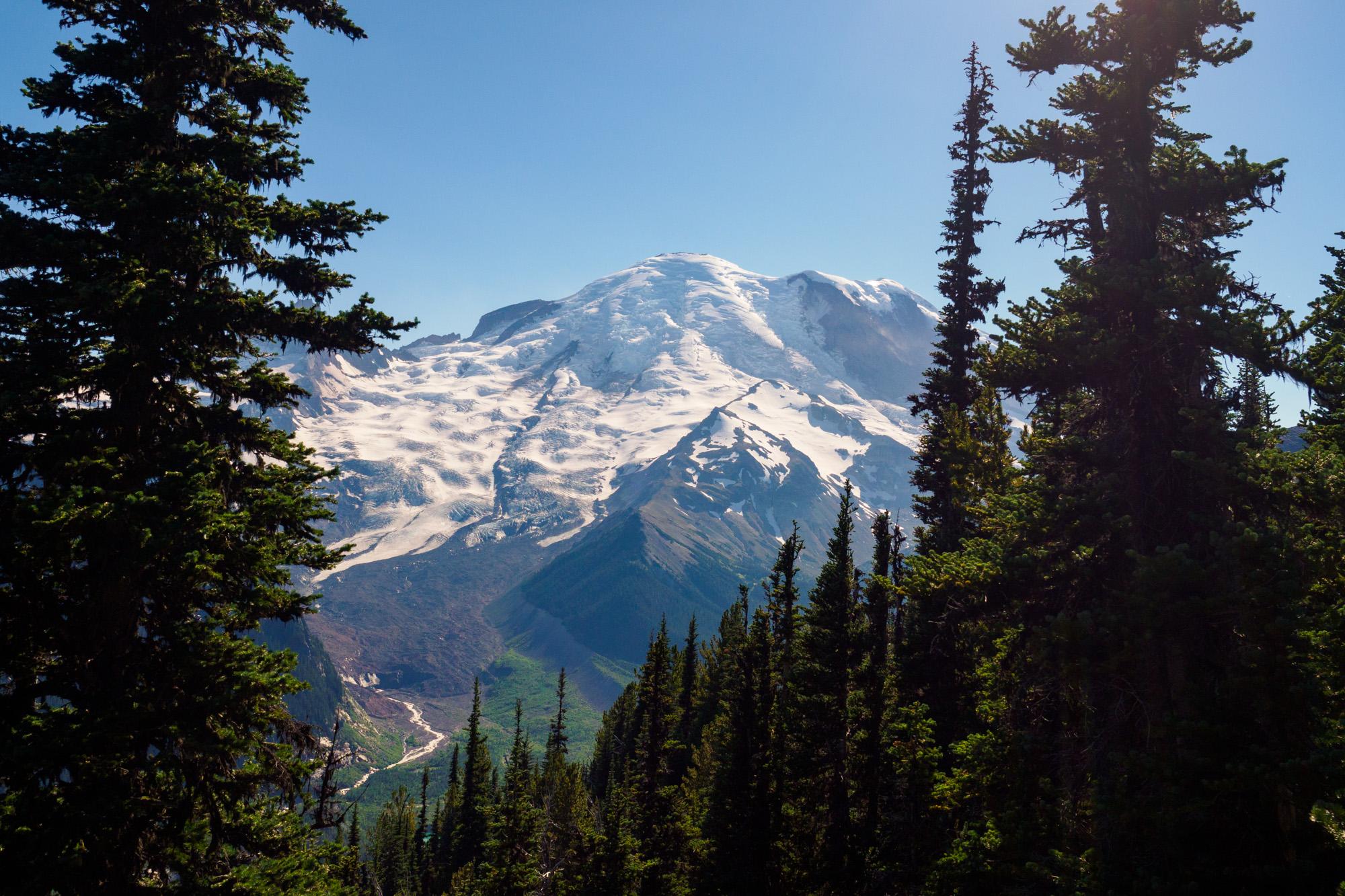 Mt Rainier Nationalpark - Aussicht von Emmons Vista