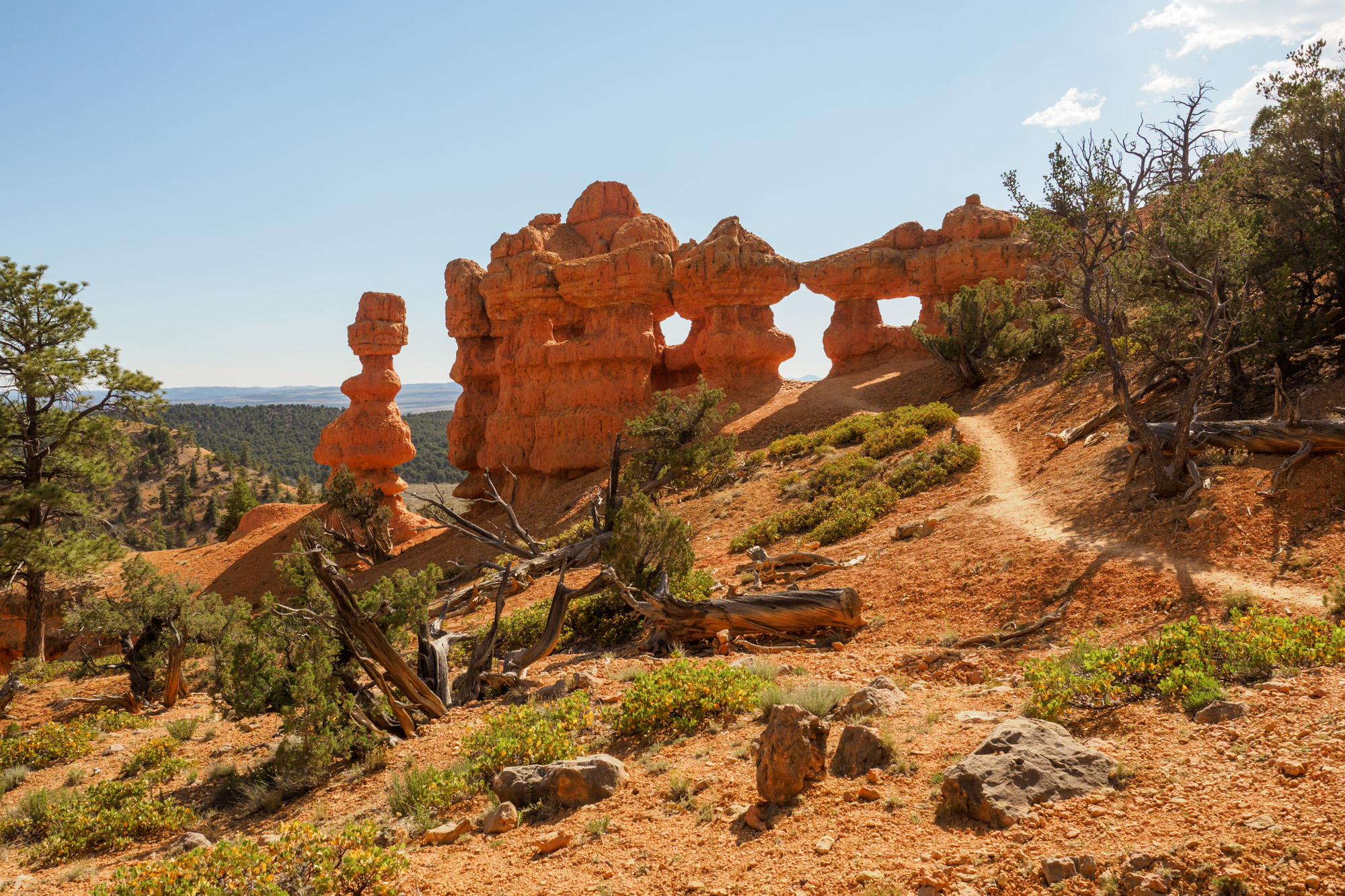 Red Canyon - Arches Trail