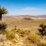 Joshua Tree Nationalpark - Aussicht vom Hügel hinter der Lost Horse Mine