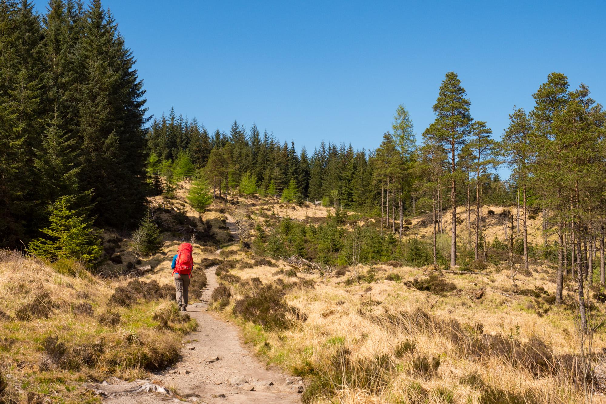 West Highland Way - Aufstieg nach Bridge of Orchy