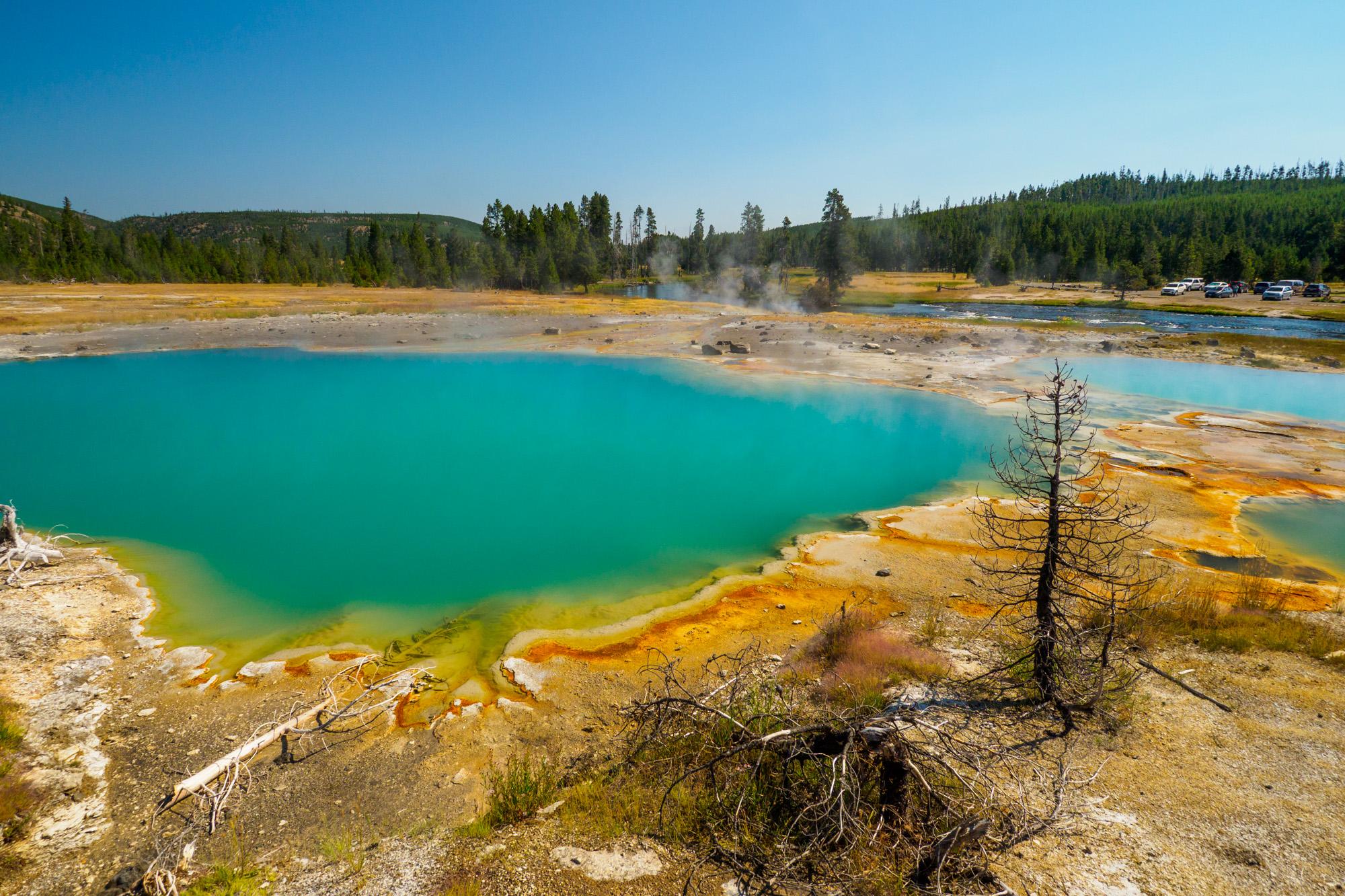 Yellowstone Nationalpark - Black Opal Pool im Biscuit Basin