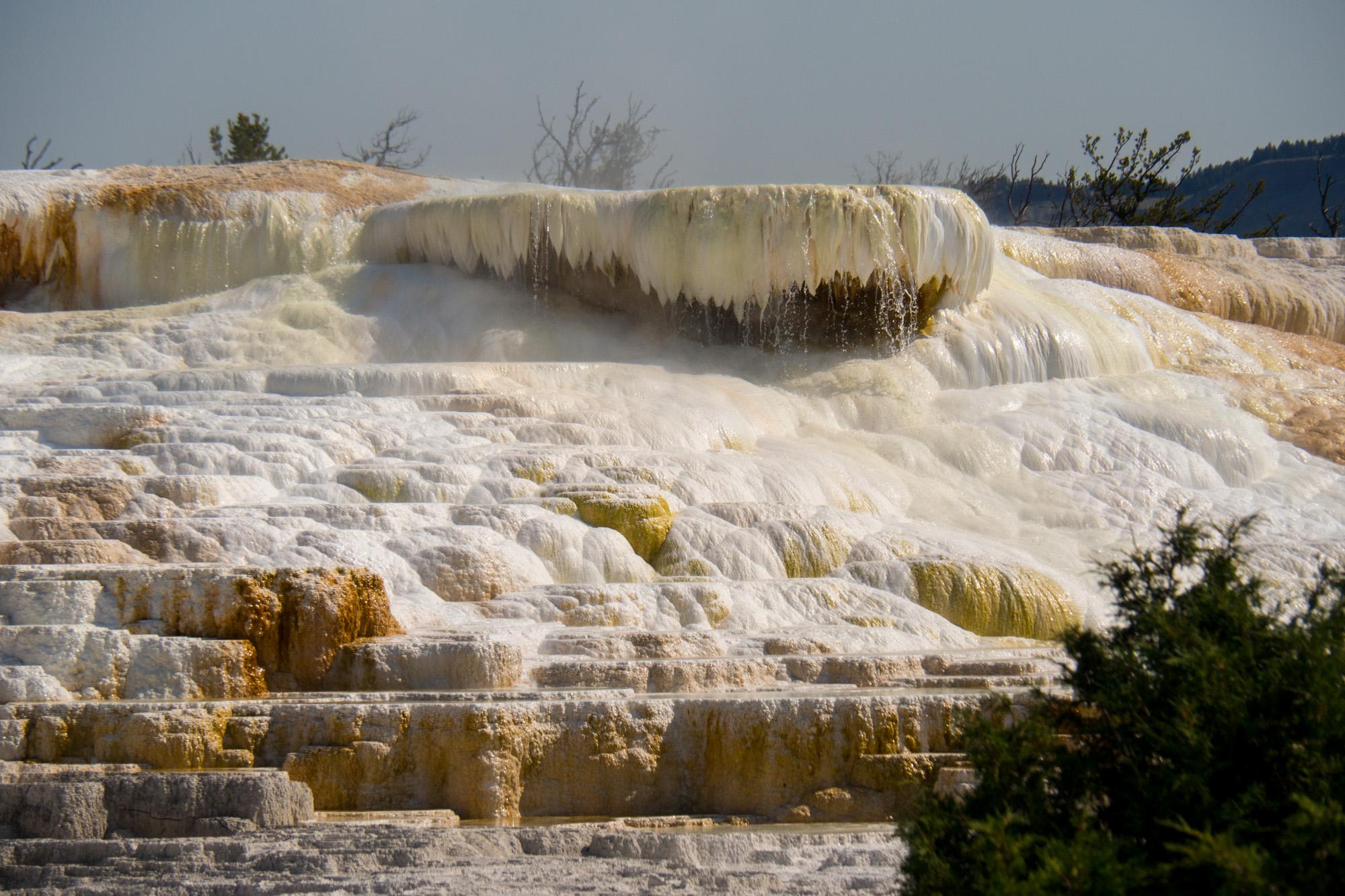 Yellowstone Nationalpark - Mammoth Hot Springs
