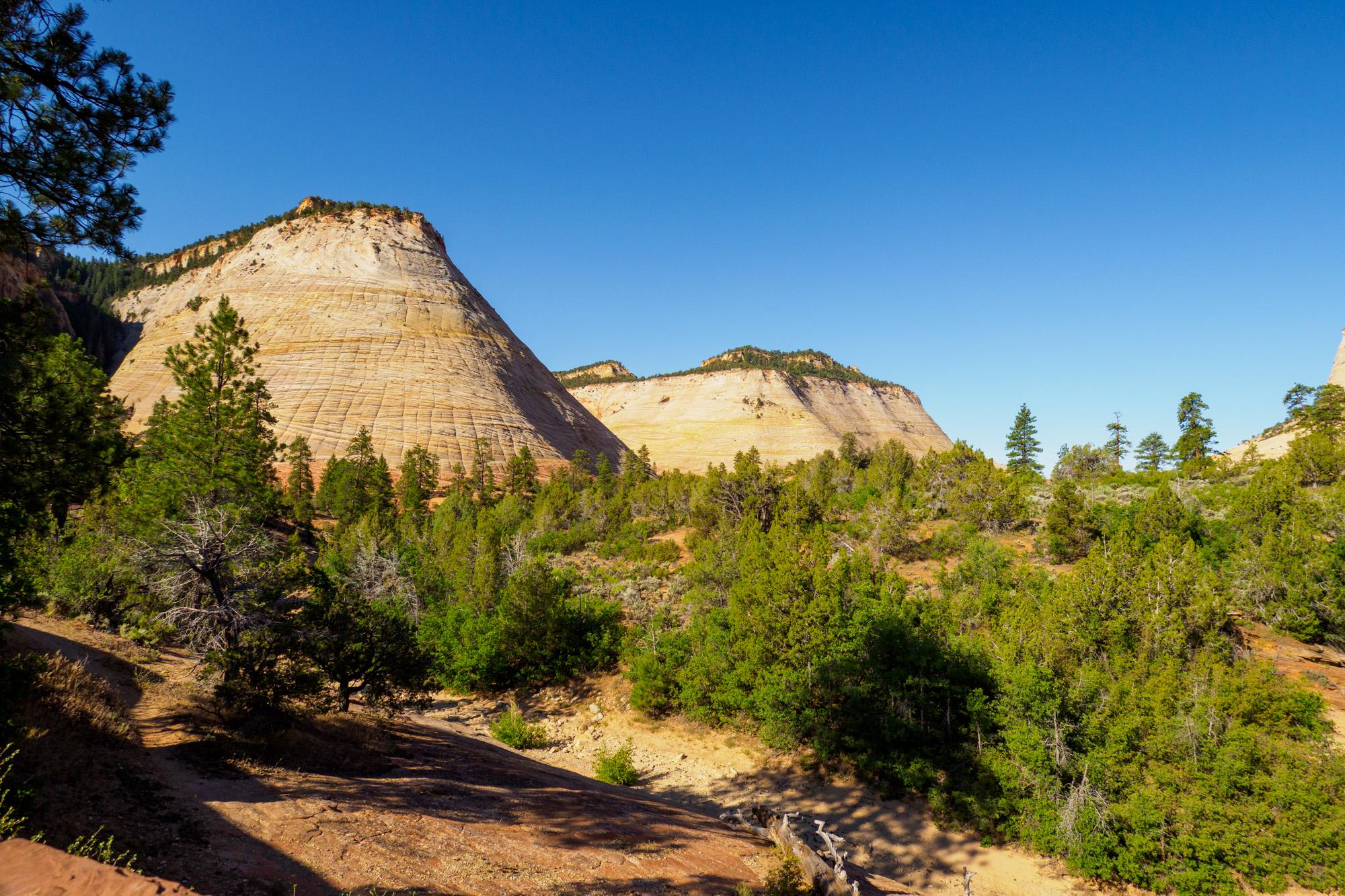 Zion Nationalpark - Checkerboard Mesa