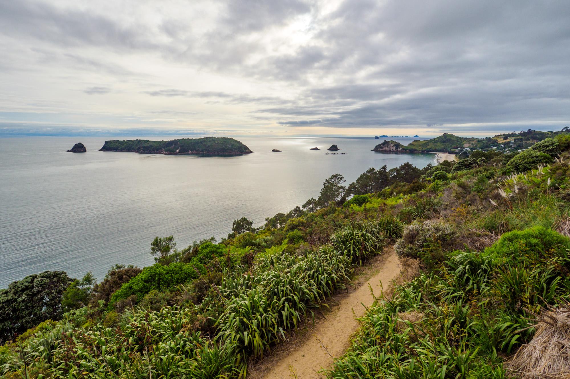 Coromandel - Cathedral Cove Trail