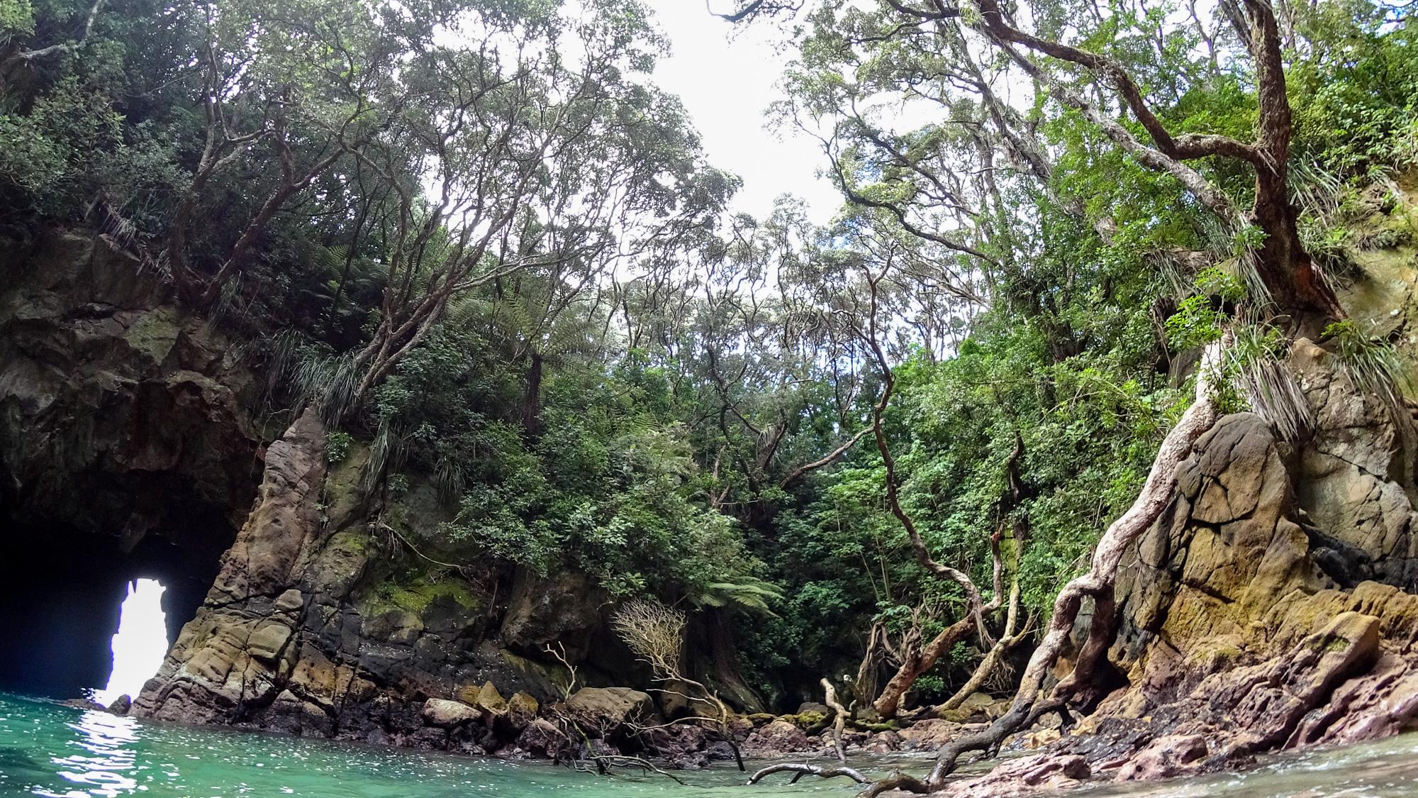 Coromandel - Kayaktour zur Donut Island