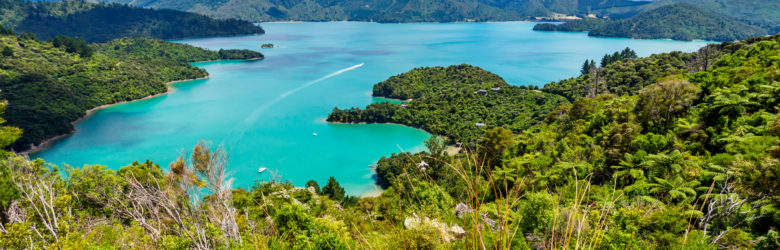 Marlborough Sounds - Kenepuru Sound