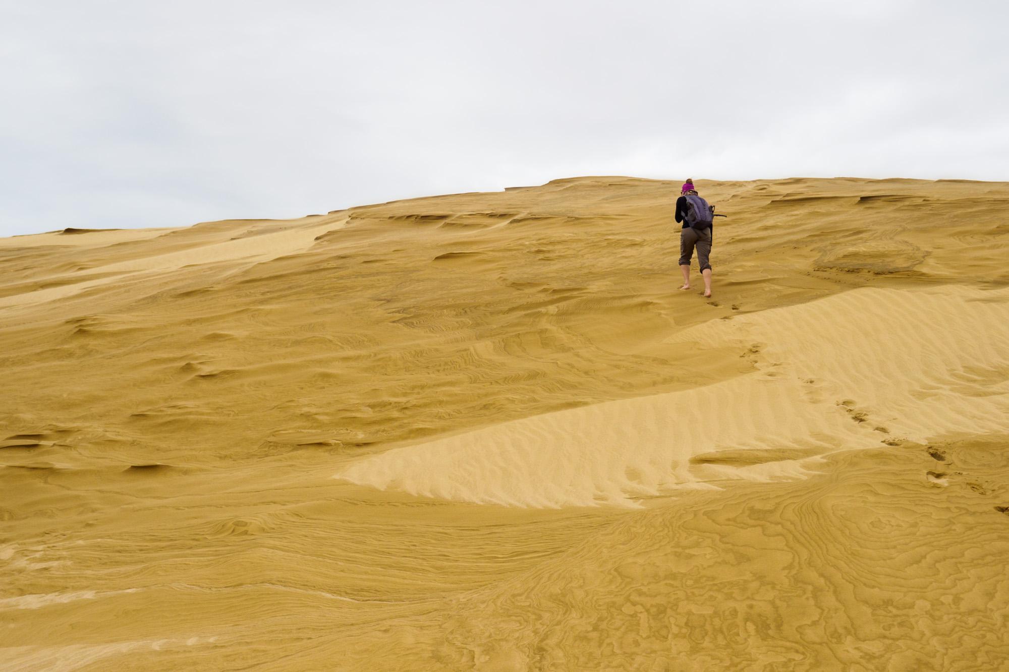 Northlands - Te Paki Dunes