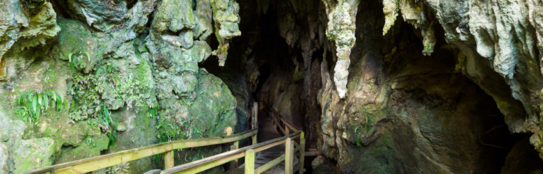 Northlands - Kawiti Glowworm Caves