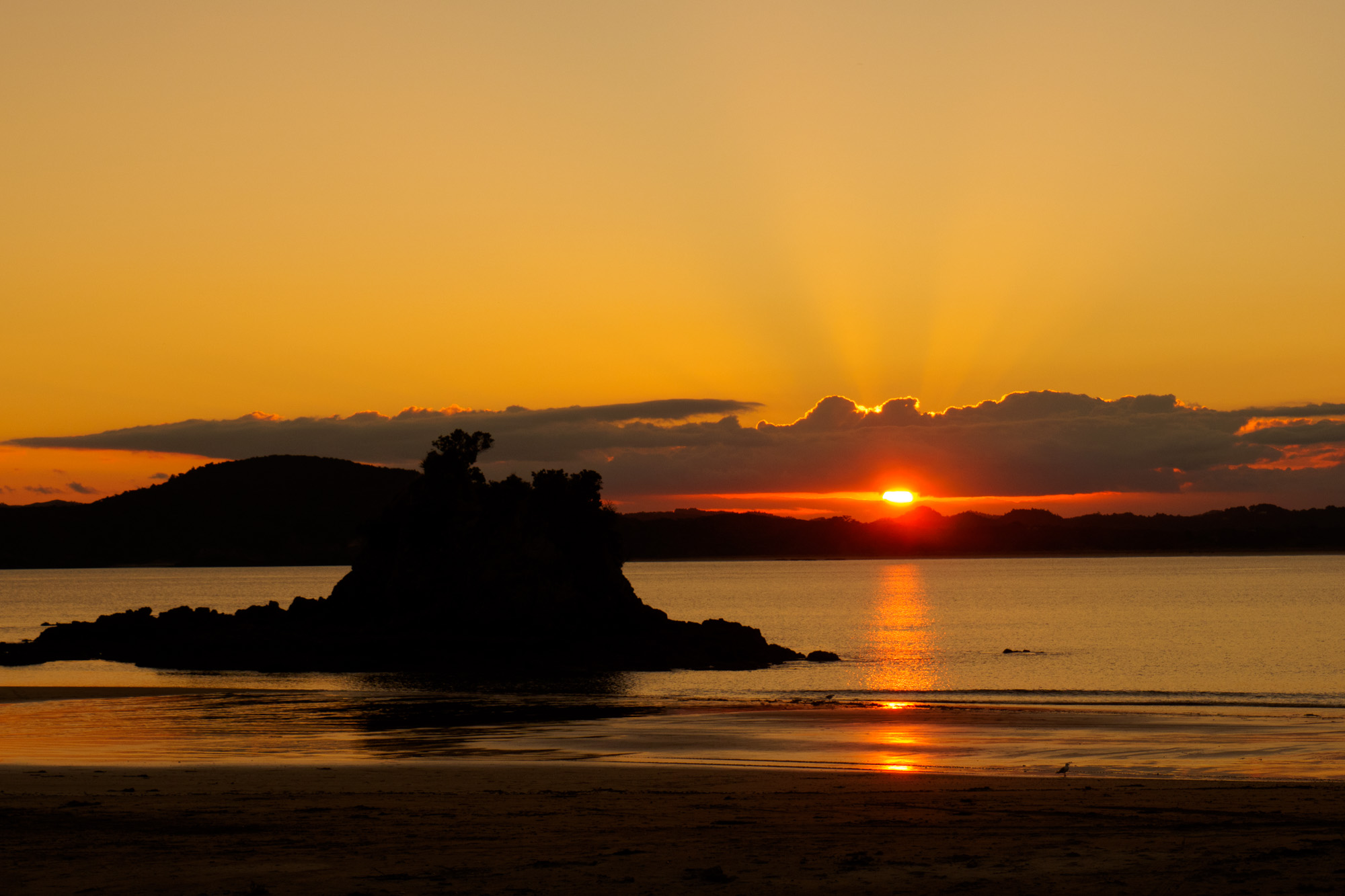 Northlands - Wellington Bay