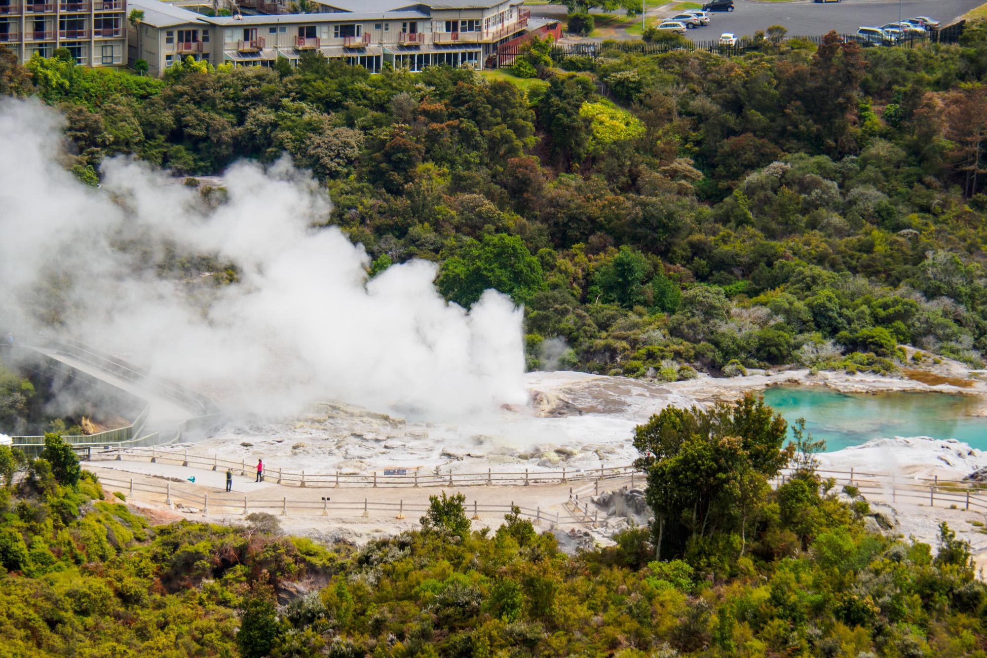 Rotorua und Taupo - Pohutu Geysir in Rotorua