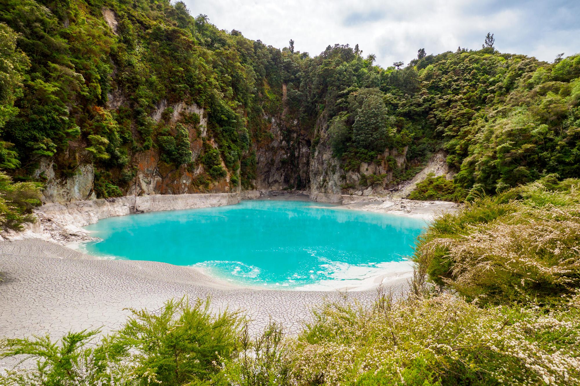 Rotorua und Taupo - Inferno Crater Lake im Waimangu Volcanic and Thermal Valley