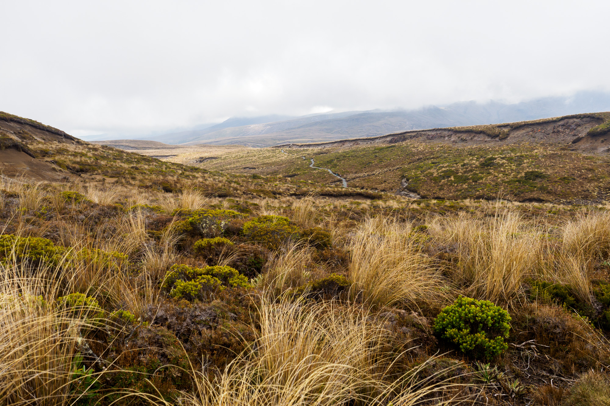 Tongariro - Auf dem Weg zu den Tama Lakes