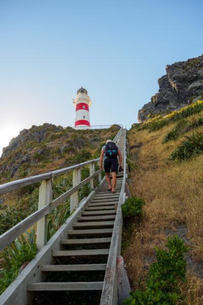 Cape Palliser - Aufstieg zum Cape Palliser Leuchtturm