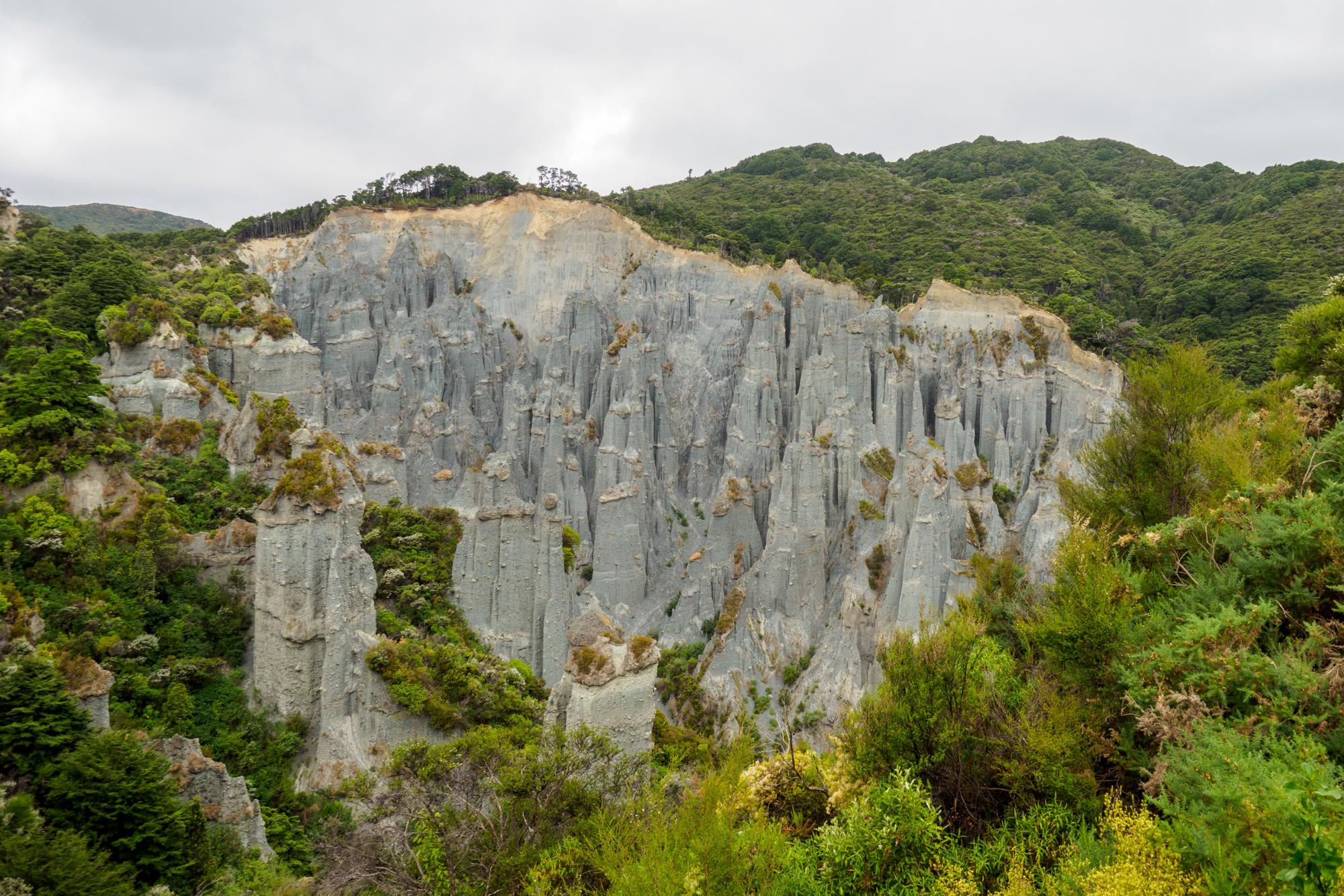 Cape Palliser - Putangirua Pinnacles