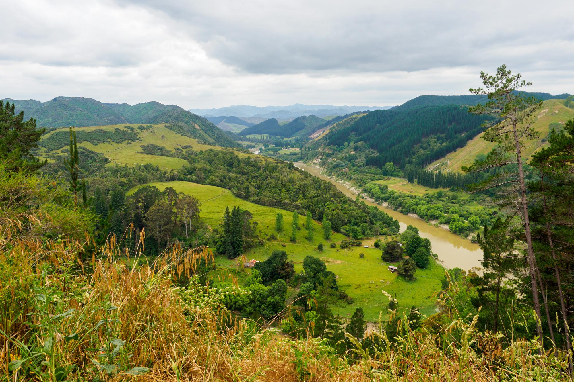 Whanganui Nationalpark - Whanganui River