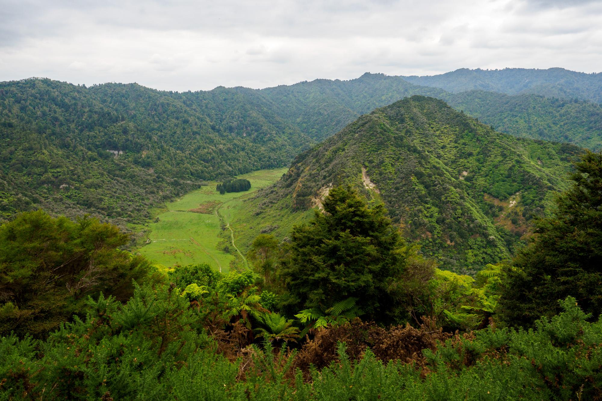Whanganui Nationalpark - Aussicht auf das Whanganui Tal