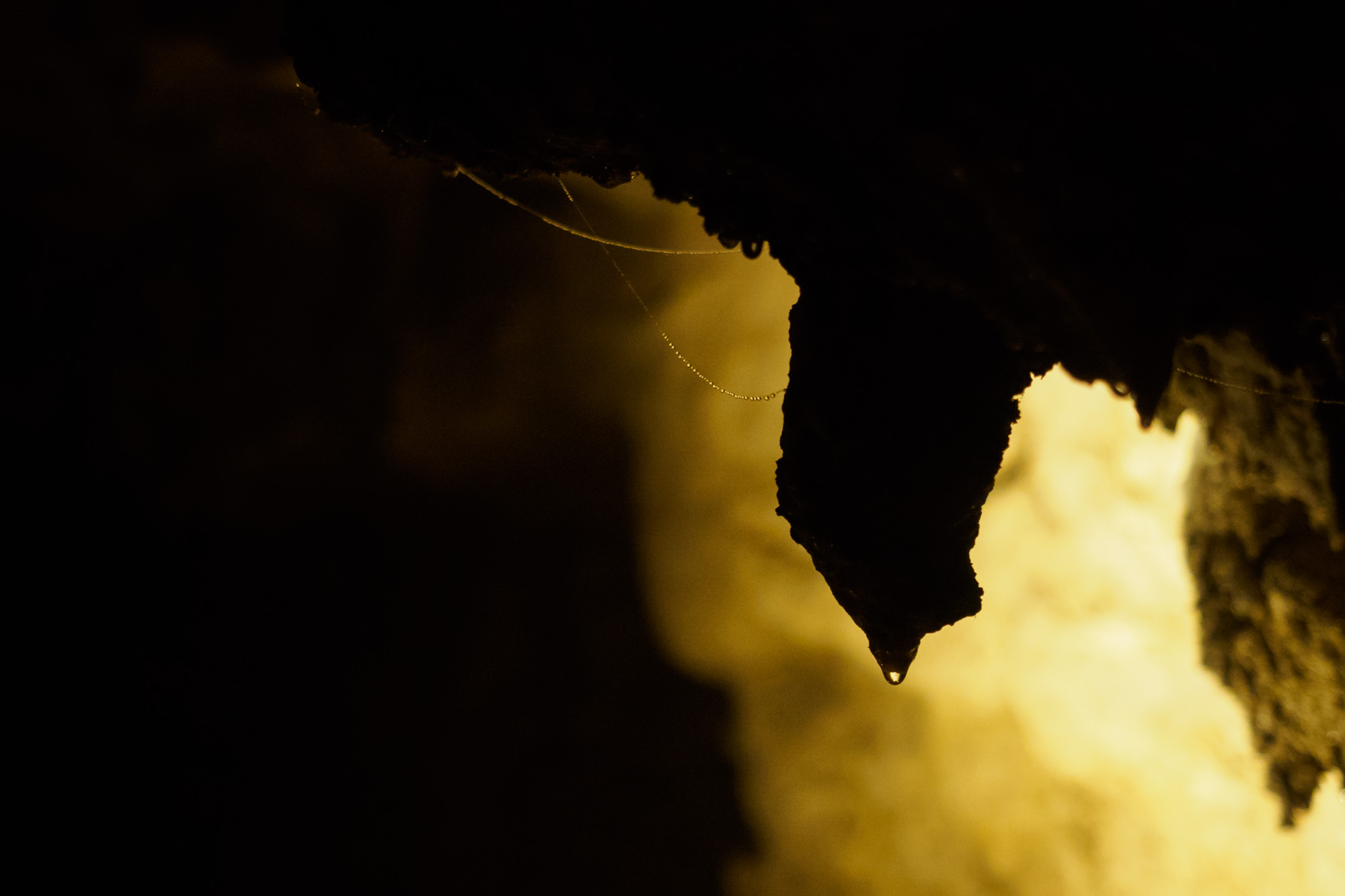 Waitomo - Höhlenformationen