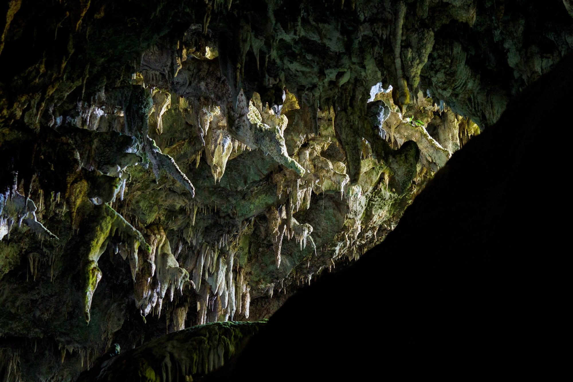 Abel Tasman Nationalpark - Rawhiti Cave