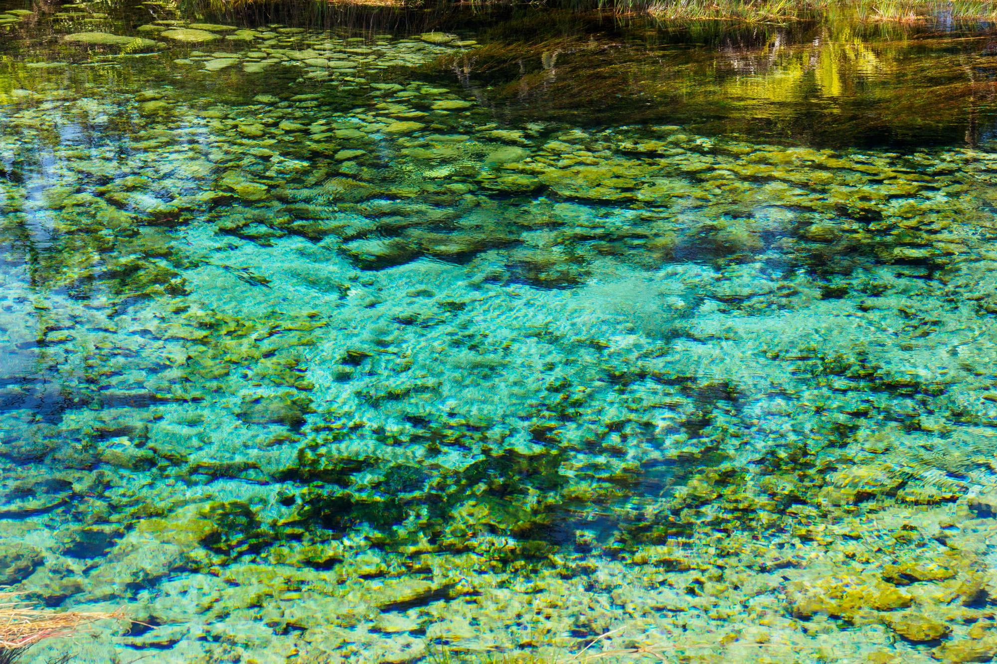 Abel Tasman Nationalpark - Te Waikoropupu Springs