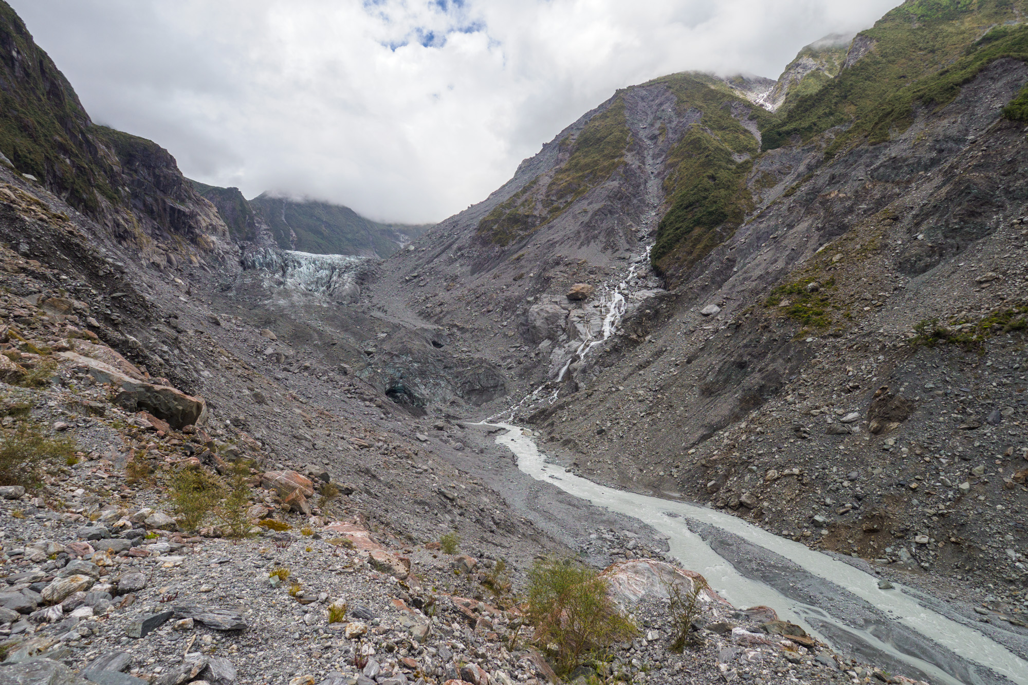 Westküste - Fox Glacier
