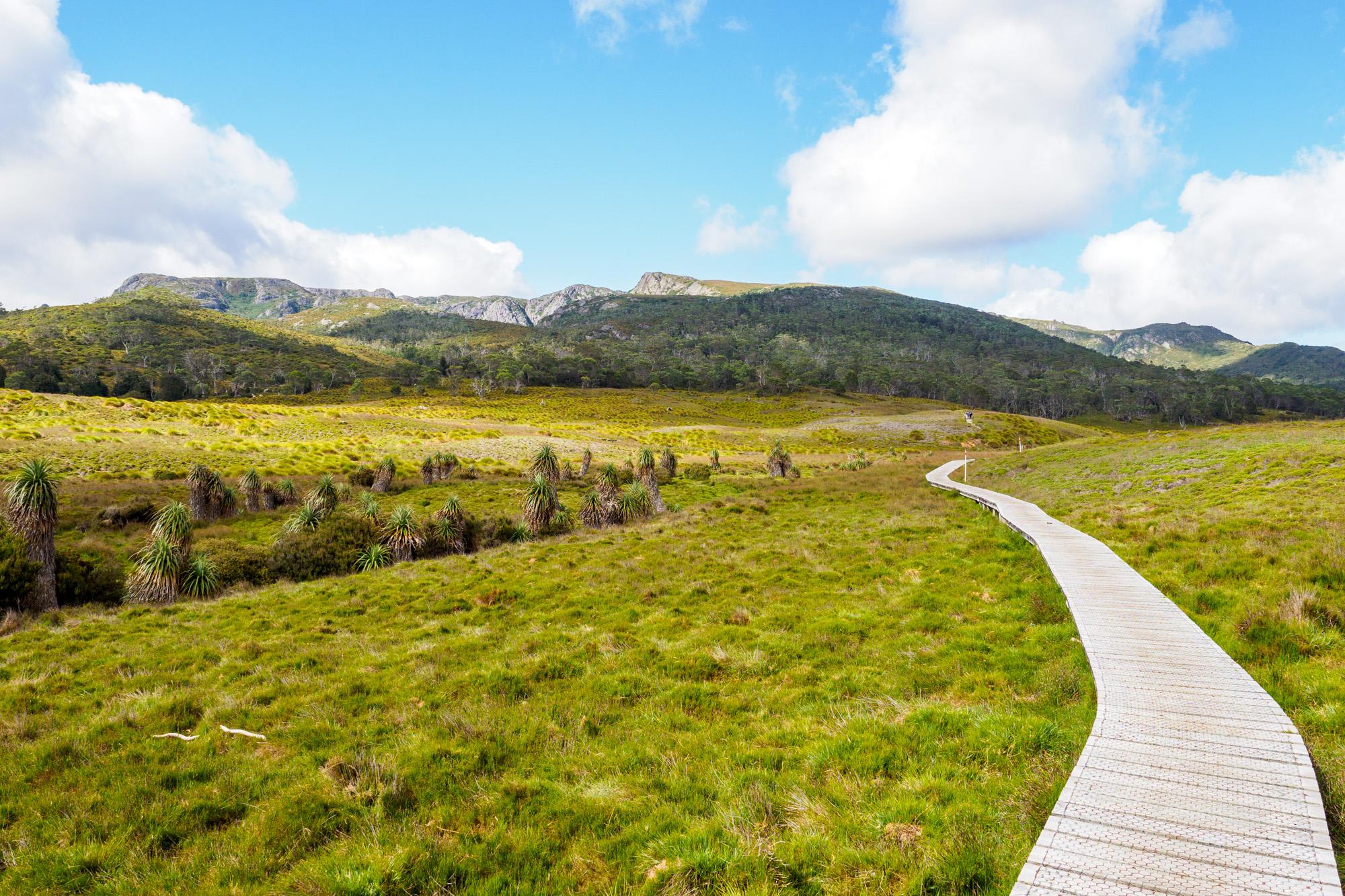 Cradle Mountain Nationalpark- Start der Wanderung bei Ronny Creek
