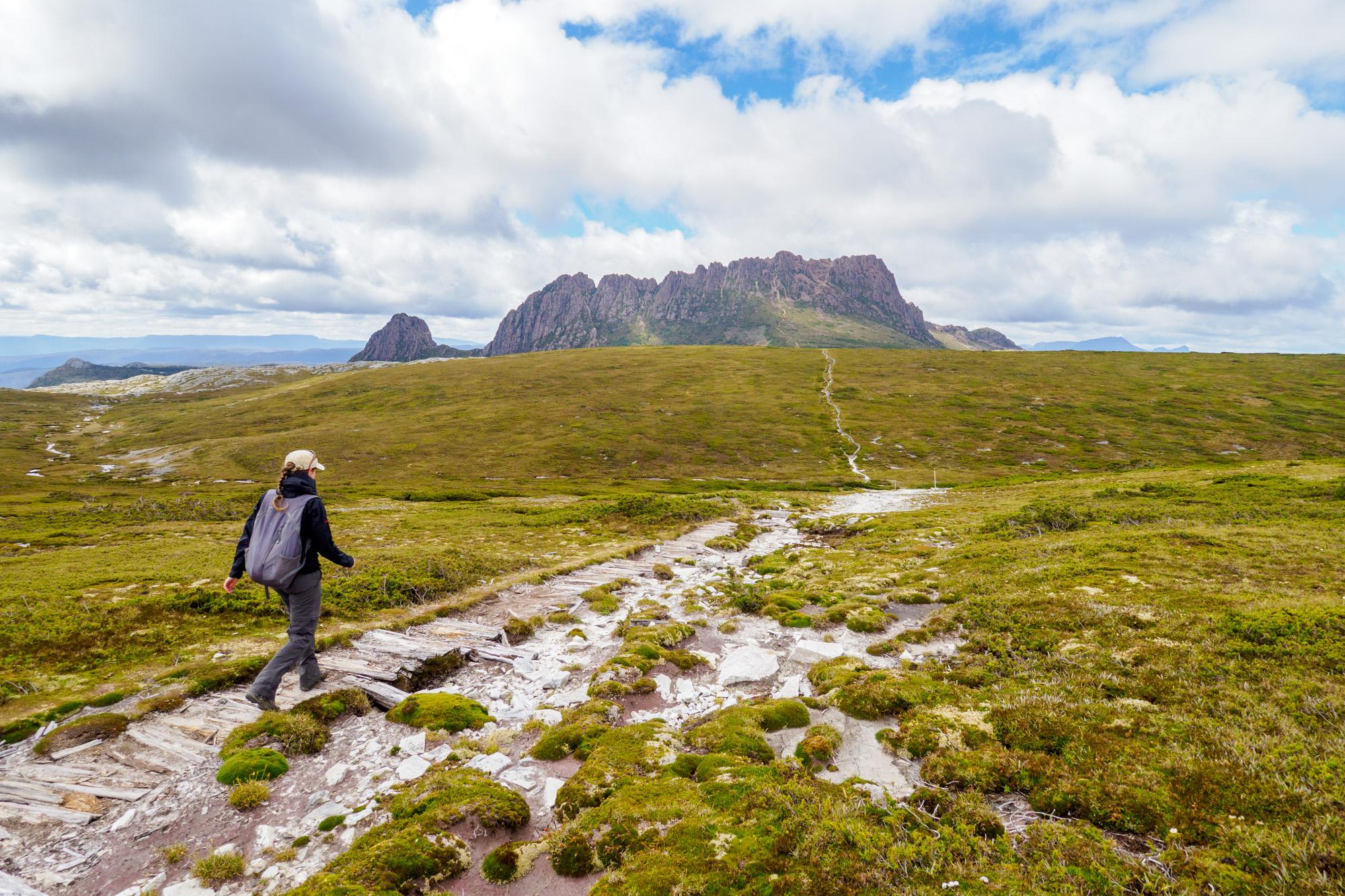 Cradle Mountain Nationalpark- Bereits von Weitem sieht man den Cradle Mountain