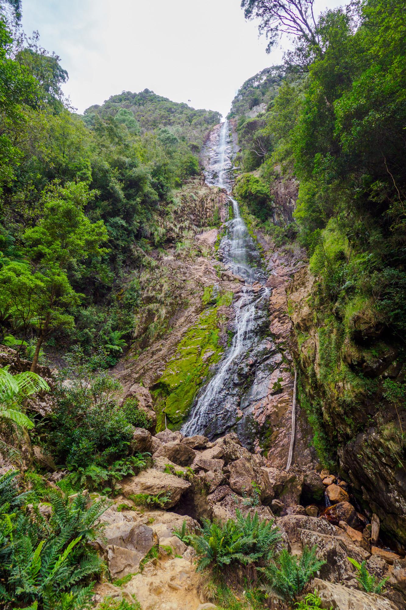 Cradle Mountain Nationalpark- Montezuma Falls