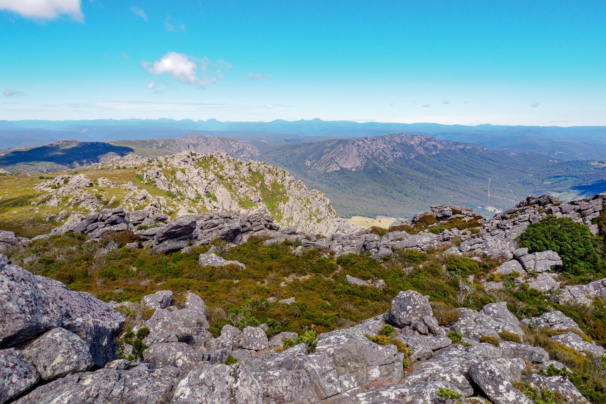 Great Western Tiers - Aussicht vom Mt Roland Richtung Cradle Mountain