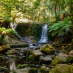 Mt Field Nationalpark - Horseshoe Falls