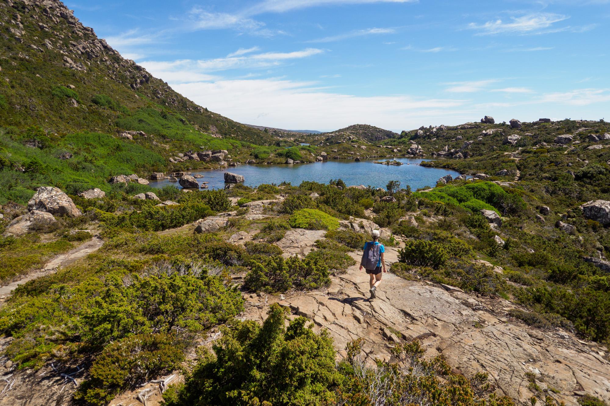 Mt Field Nationalpark - Wanderung zum Lake Newdegate und The Watcher