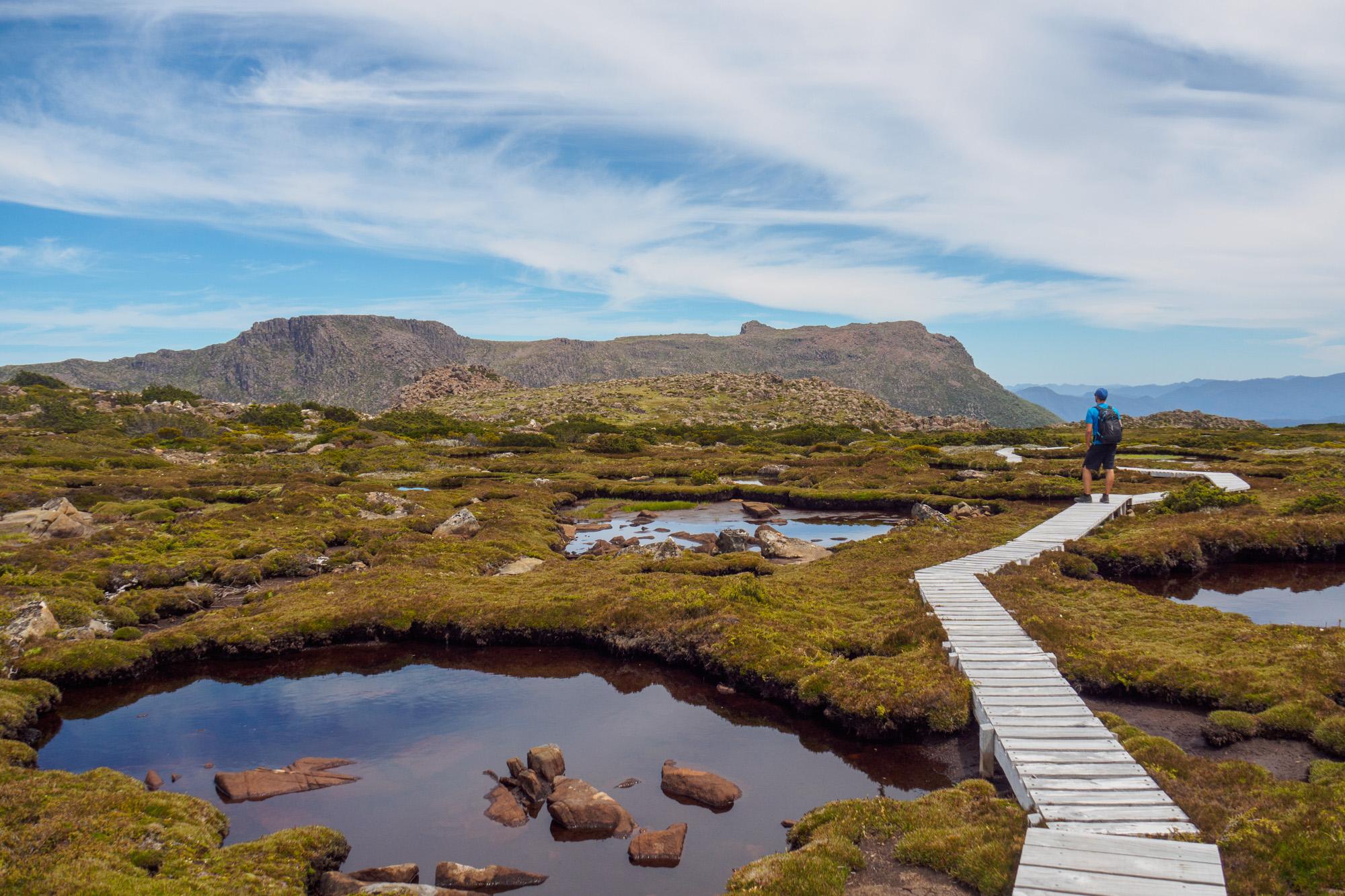 Mt Field Nationalpark - Aussicht auf The Watcher auf den Mount Field